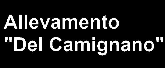 """Allevamento """"Del Camignano"""""""